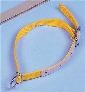 Halsriemen f.Schafe, Nyl. 60cm gelb