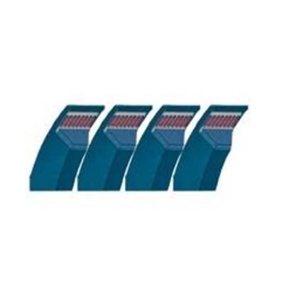 Keilriemensatz 949396.0 zu Claas