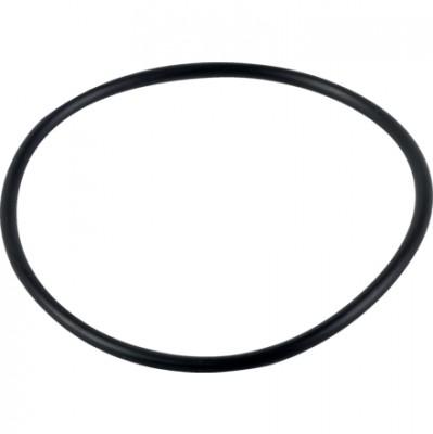 O-Ring 242092 zu Hardi